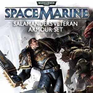 Warhammer 40k Space Marine Salamanders Veteran Armour Set
