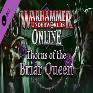 Acheter Warhammer Underworlds Online Warband Thorns of the Briar Queen Clé CD Comparateur Prix