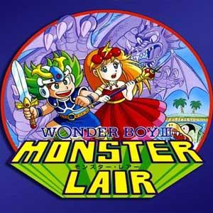 Acheter Wonder Boy 3 Monster Lair Clé Cd Comparateur Prix
