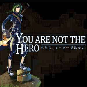 You Are Not The Hero