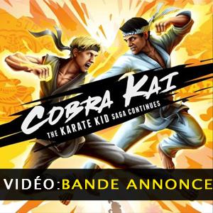 Cobra Kai The Karate Kid Saga Continues Vidéo de la bande annonce