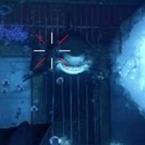 Depth - Requin