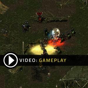 Divine Divinity Gameplay Video