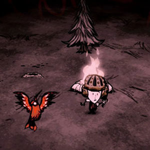 Don't Starve Together Bats Toi