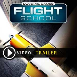 Acheter Dovetail Games Flight School Clé Cd Comparateur Prix