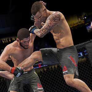 UFC 4 Professionnel