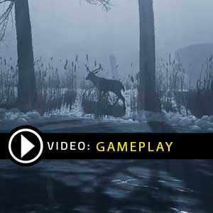 Fade to Silence Gameplay Video