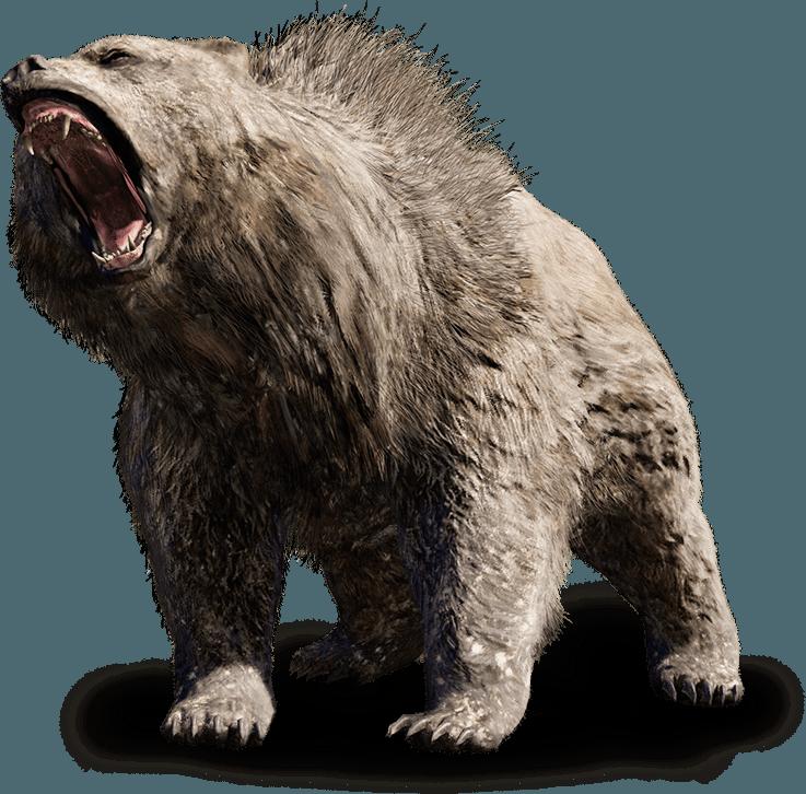 beast bear