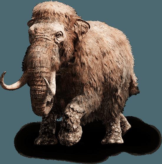 beast mammouth