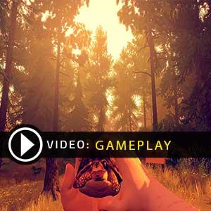 FireWatch PS4 Gameplay Vidéo