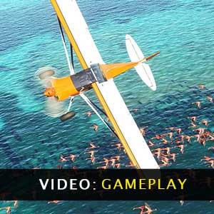 Vidéo du jeu Microsoft Flight Simulator