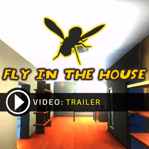 Acheter Fly in the House Clé Cd Comparateur Prix
