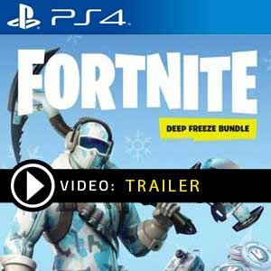 Fortnite Deep Freeze Bundle PS4 en boîte ou à télécharger