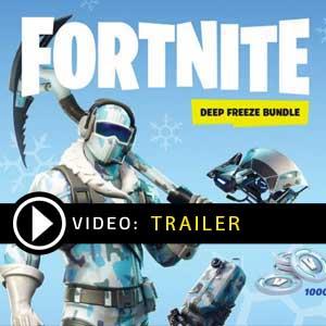 Acheter Fortnite Deep Freeze Bundle Clé CD Comparateur Prix