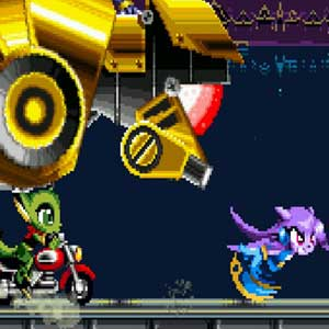 Freedom Planet Personnages