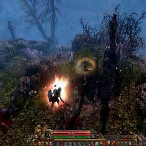 Grim Dawn Système de Combat