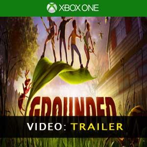 Acheter un code de jeu pour Xbox One Grounded Comparer les prix