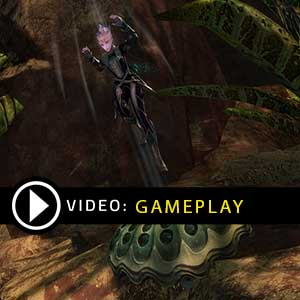 Guild Wars 2 Gems Gameplay Video