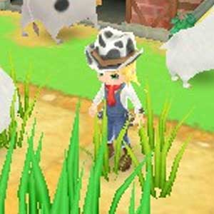 Harvest Moon 3D A New Beginning Nintendo 3DS Personnages