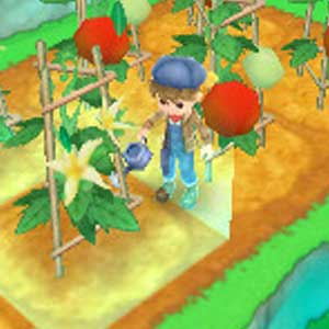 Harvest Moon 3D A New Beginning Nintendo 3DS Arrosant les plantes