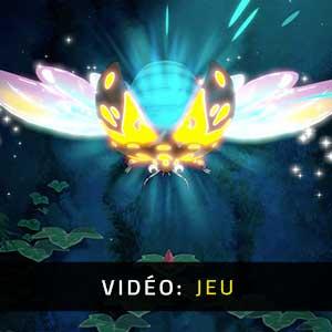 Hoa Vidéo De Gameplay