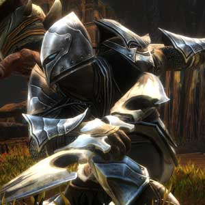 Kingdoms of Amalur Re-Reckoning le guerrier Jottun