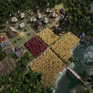 Kingdoms Reborn Forêt