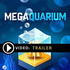 Acheter Megaquarium Clé CD Comparateur Prix