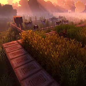 flux de soleil à travers le brouillard