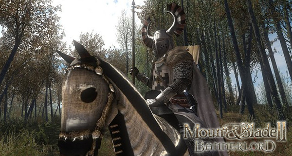 Mount and Blade 2 : Bannerlord