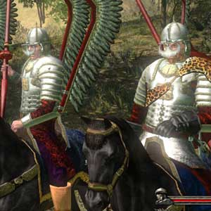 Mount Blade Collection Soldats