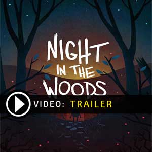 Acheter Night in the Woods Clé Cd Comparateur Prix