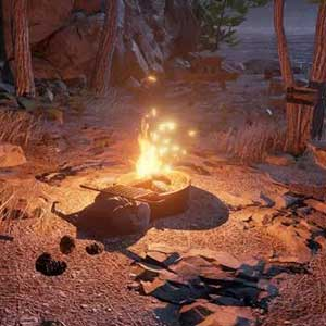 Se détendre sur le feu de camp
