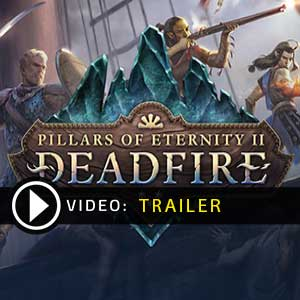 Acheter Pillars of Eternity 2 Deadfire Clé Cd Comparateur Prix