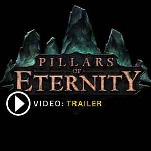Acheter Pillars of Eternity Cle Cd Comparateur Prix