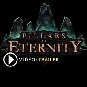Acheter Pillars of Eternity Cle Cd Comparateur Prix