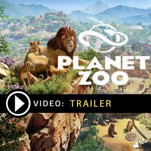 Acheter Planet Zoo Clé CD Comparateur Prix
