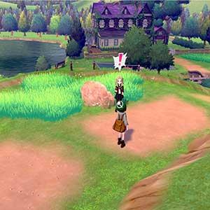 Pokemon Sword Nintendo Switch défi