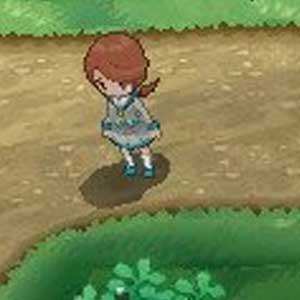 Pokemon X Nintendo 3DS Conversation