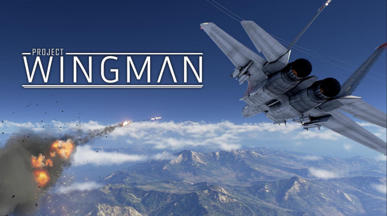 comparer les meilleures offres de project wingman
