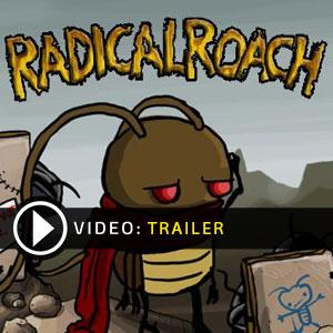Acheter Radical Roach Cle Cd Comparateur Prix