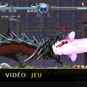 Record of Lodoss War Deedlit in Wonder Labyrinth Vidéo de gameplay