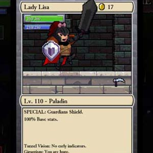 Rogue Legacy Personnage