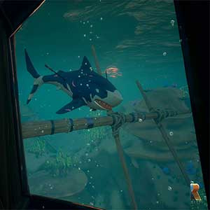Requin de la Sea of Thieves