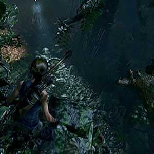 jungle impitoyable