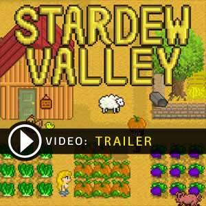 Acheter Stardew Valley Clé Cd Comparateur Prix
