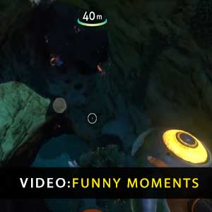 Subnautica Moments amusants