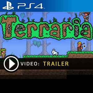 Terraria PS4 en boîte ou à télécharger