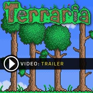 Acheter Terraria Cle Cd Comparateur Prix