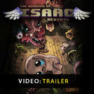 Acheter The Binding of Isaac Rebirth Clé Cd Comparateur Prix